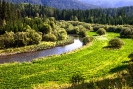 Сибирская речка